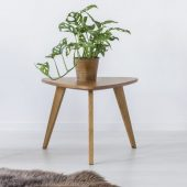 chair-table-plant-and-fur-P2ERV4Z-scaled.jpg